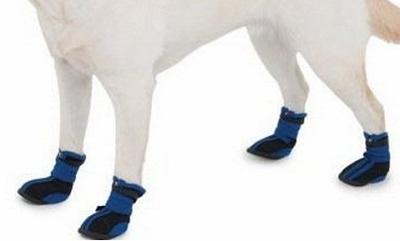 ботинки фaрaдей спб